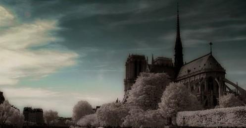 Notre Dame l'hiver